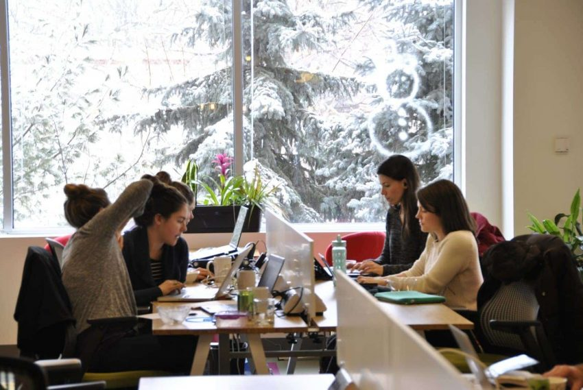 Women working hard on their project in the NGIN Workplace Cambridge Coworking area.